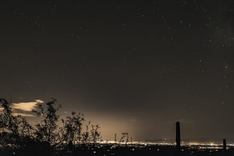 The stars were bright enough to evade the light pollution.