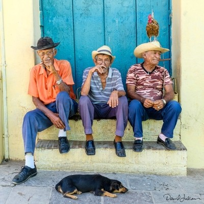 Cuba, old men, rooster &dog