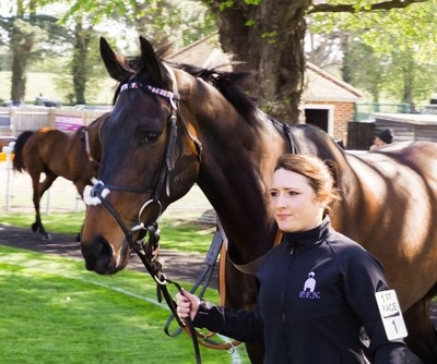 Trainer and her horse