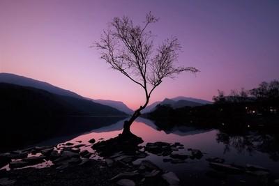 Breaking Dawn,Llyn Padarn,Llanberis