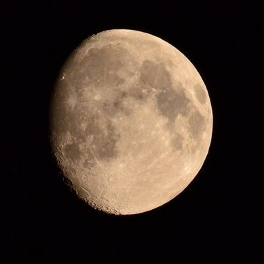 Image taken with newly purchased Sigma 150-500 lens with my Nikon 3100D suffice to say I'm very pleased with the result! Cropped image in P/Processing.