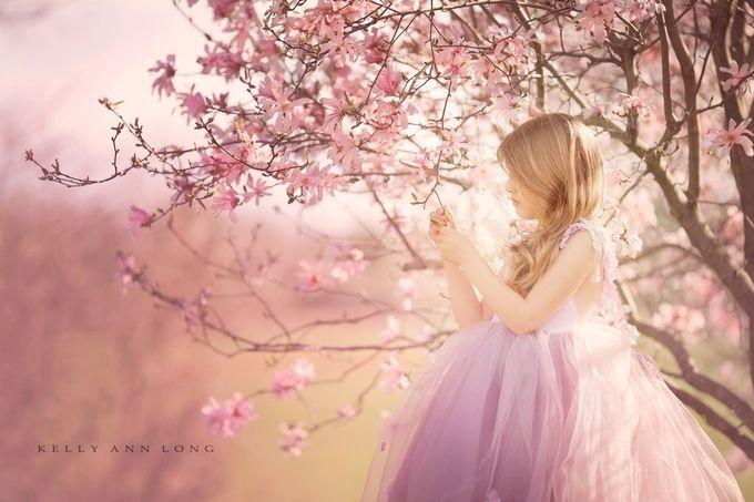 Blossom by KellyALongphotography - Pink Photo Contest