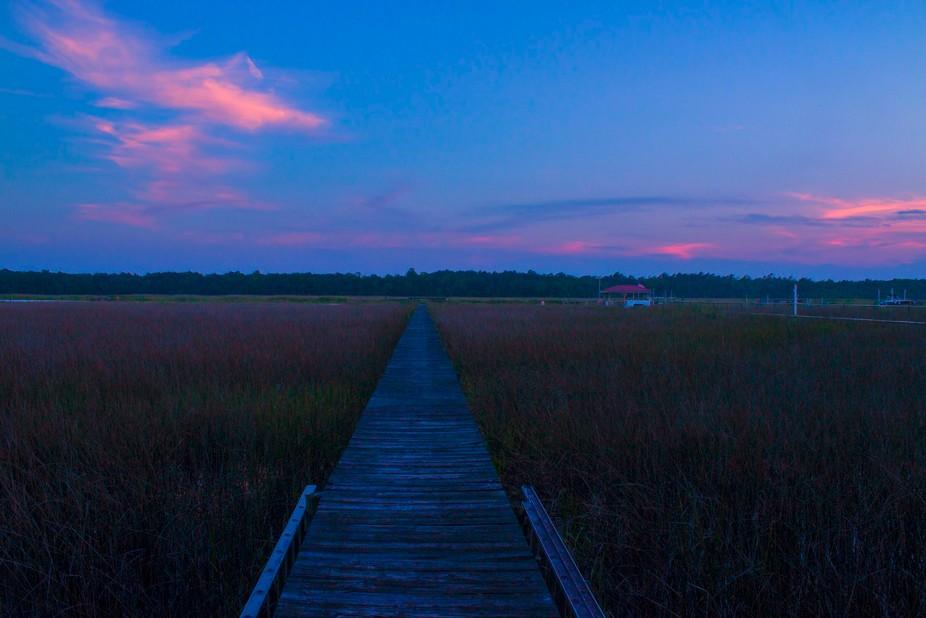 Photo taken in Charleston, South Carolina.
