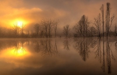 !!! A Morning of Reflection !!!