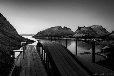 Arctic without colors