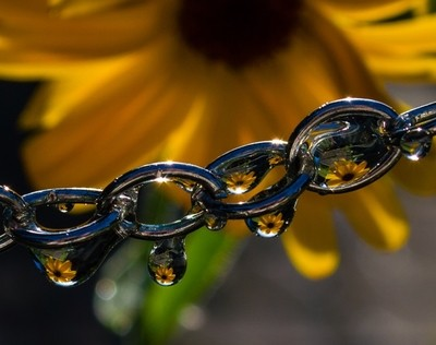 yellow daisy chain