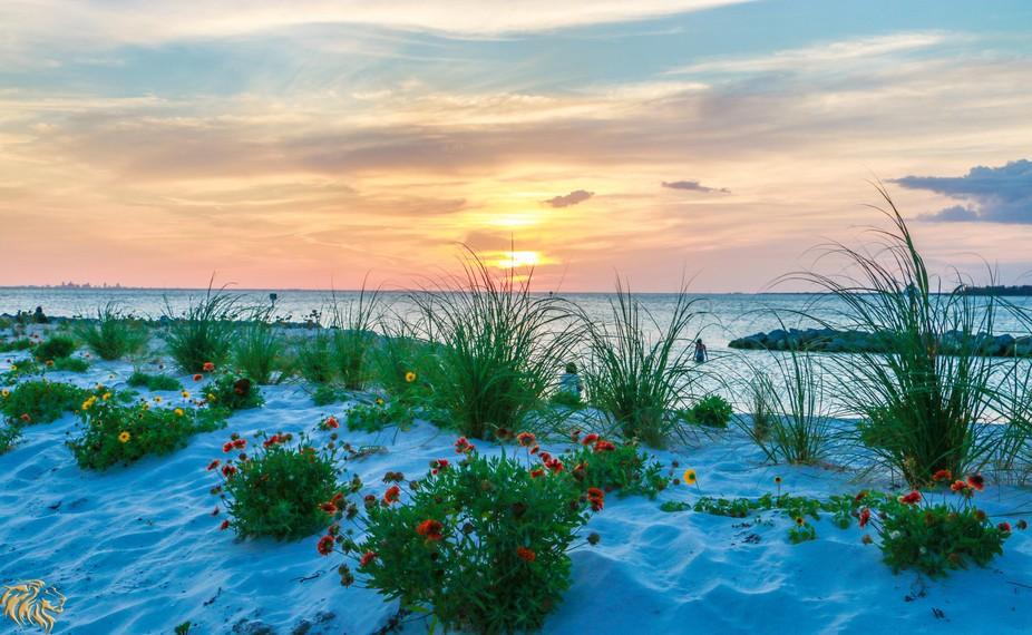 Another Sunset on Apollo Beach
