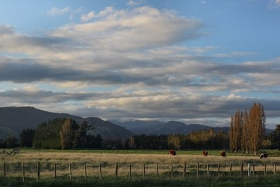 Evening vista, Tararua Ranges