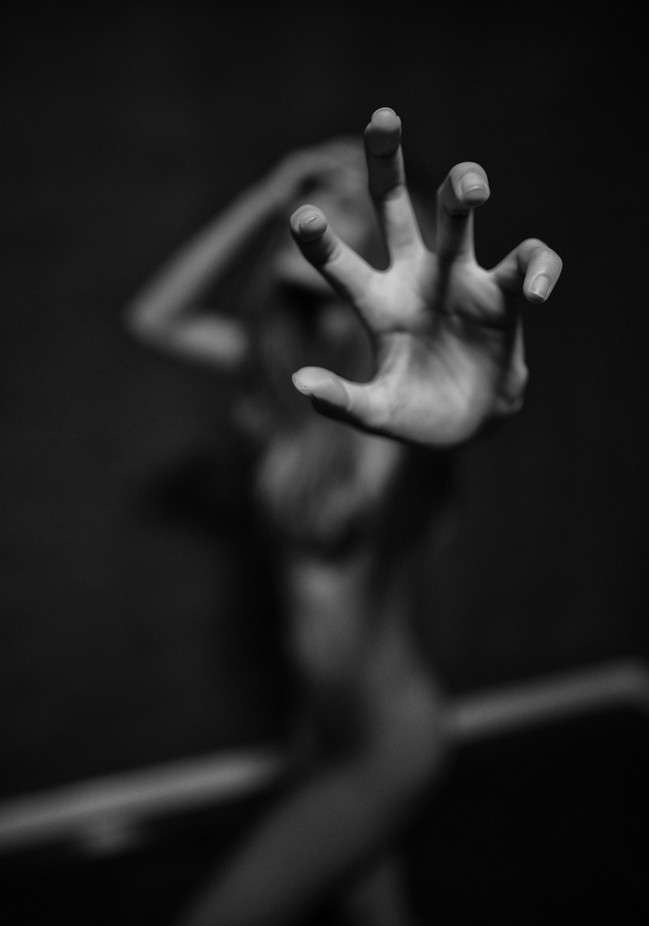 hand made portraiture by PoloD - Blurred Subjects Photo Contest
