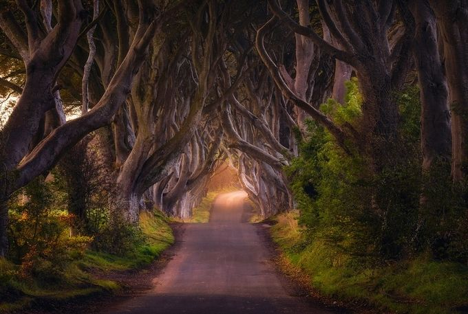 The King's Road by Daniel-Photography - Country Roads Photo Contest