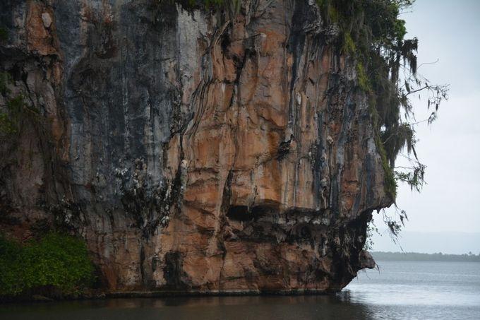 Taken inside Los Haitises National Park Dominican Republic