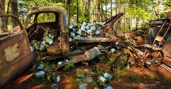 I went to Old Car City located in White Georgia, OMG this place is amazing. It is a photography paradise. There is 34 acres with 6 miles of trails. I couldn't do it all in one trip I will be back.