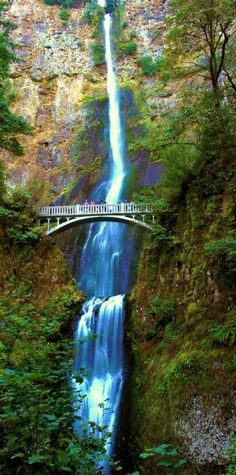 Multnomah Falls w ND.06 041
