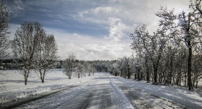 Holtvegen lørdag morgen etter snøfall. by rolfnorge - Winter Roads Photo Contest