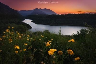 Cedrino lake