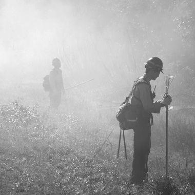 Waiting in the Smoke