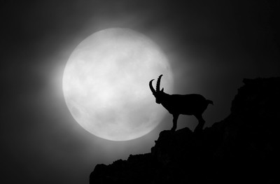 The Ibex and the moon