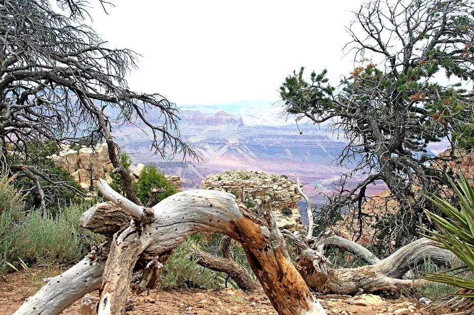 A different view of the Grand Canyon