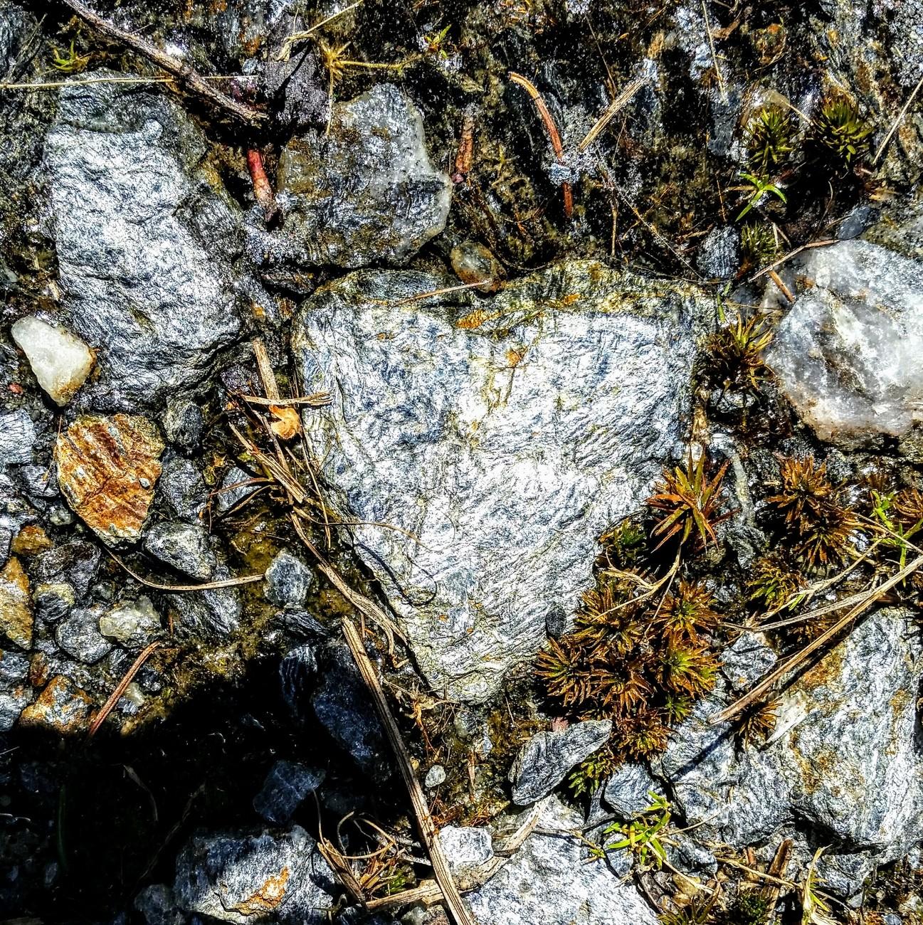 Coeur de pierre / Stone heart !