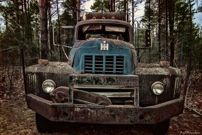 its a hard life  by AnneDphotography - Trucks Photo Contest