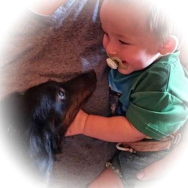 Little Man and Grammy's puppy dog
