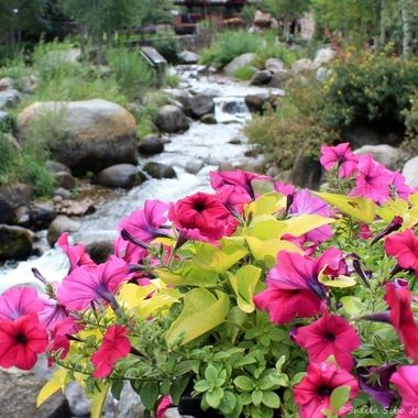 Beaver Creek in Colorado