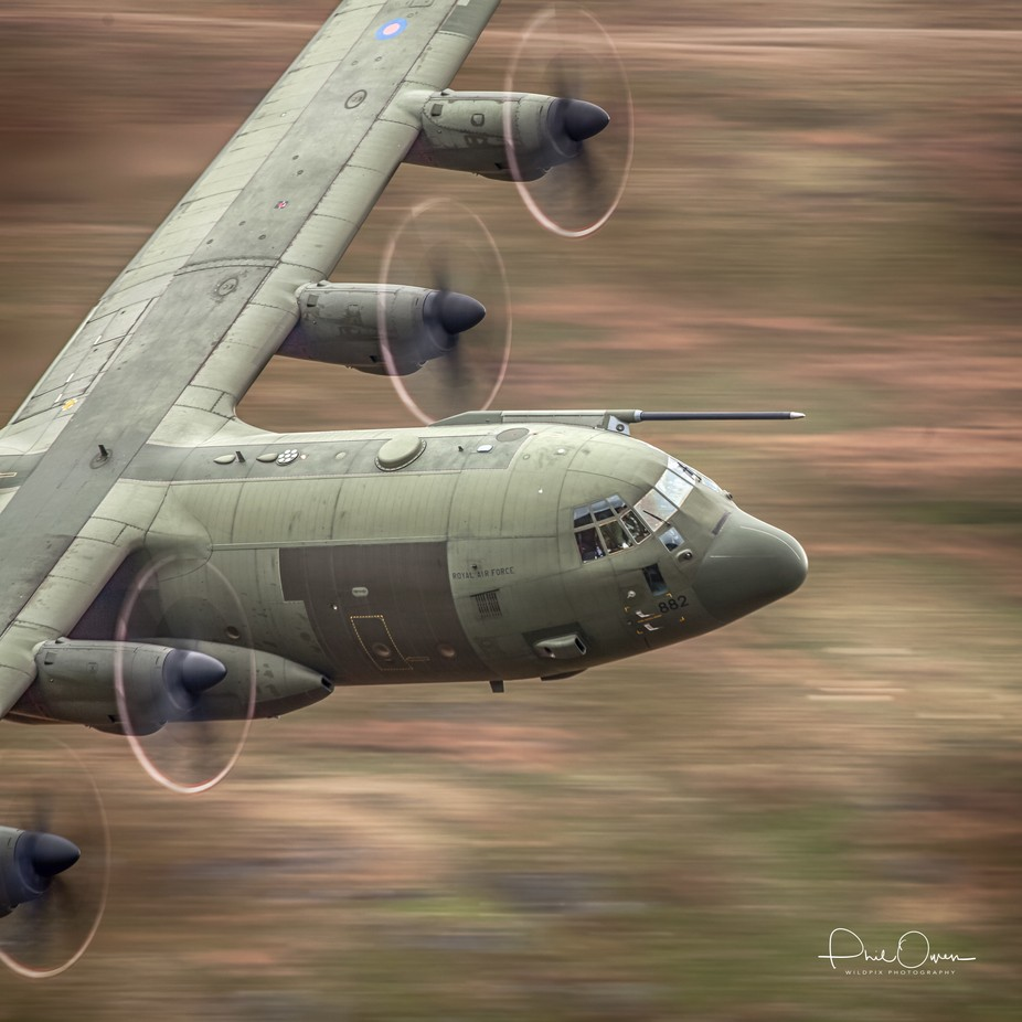 Herc-2 by philowen - Large Photo Contest