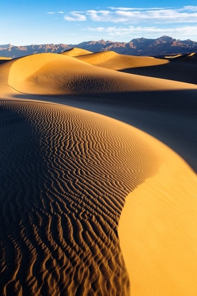 Dunes in the morning