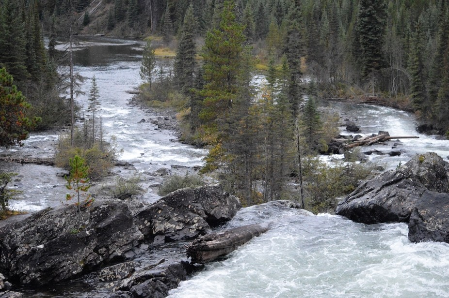 Cariboo Provincial Park