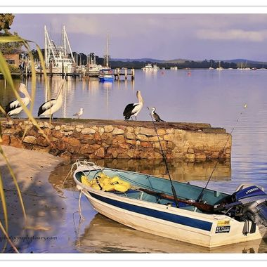 Post Card - Tin Can Bay, Queensland