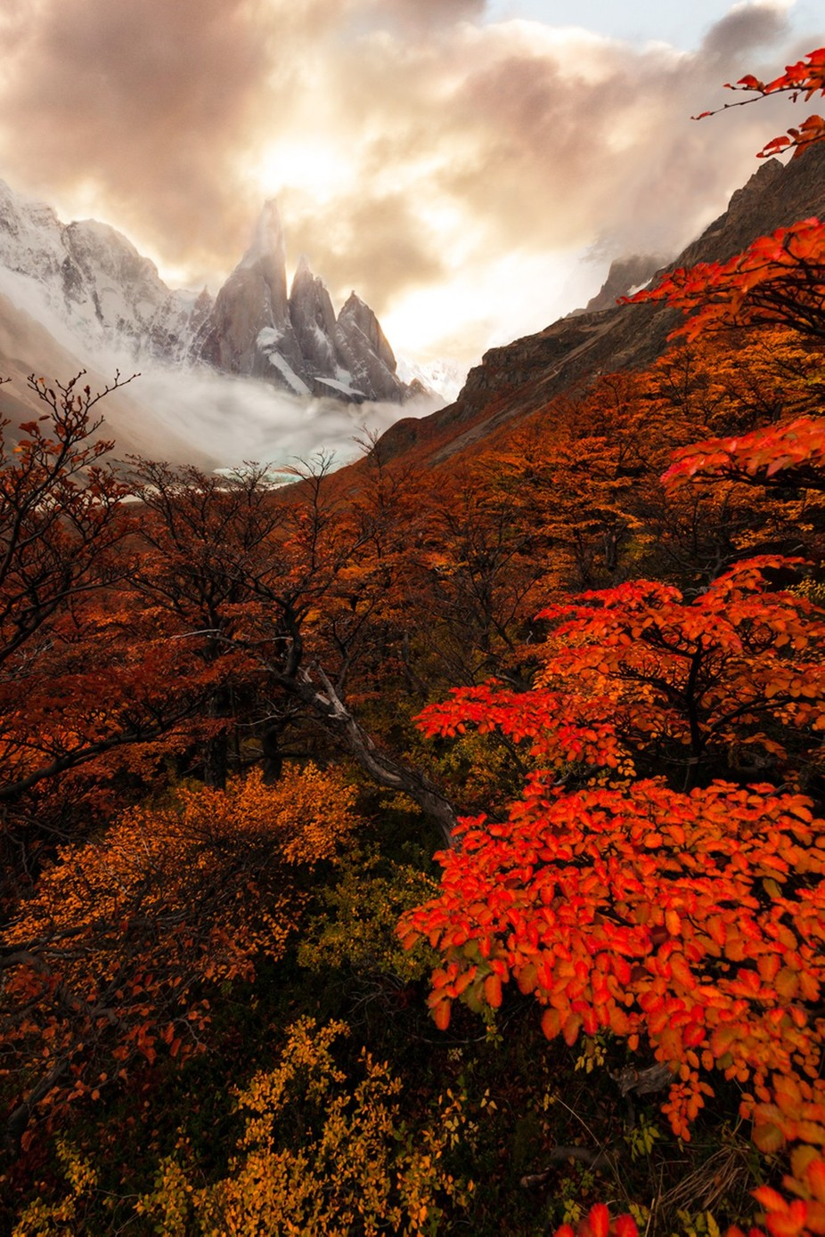 The Cerro Torre by WildEssence - Rule Of Thirds Photo Contest v3