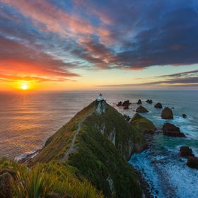 The previous day I drove a 4 hour return journey to capture the sunrise at Nugget Point but was let down by the clouds.   I wasn't happy tha...