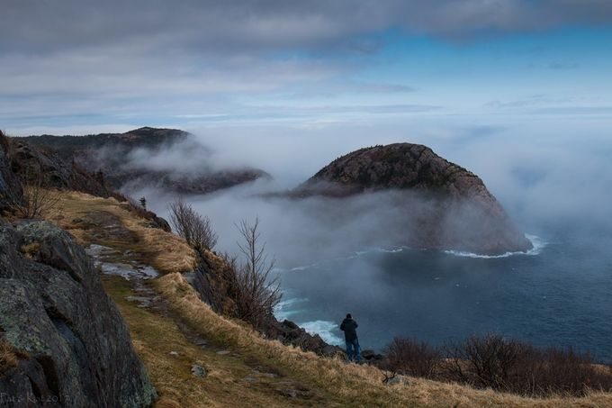 Signal Hill In The Mist by KatnPat - A Walk In The Mist Photo Contest