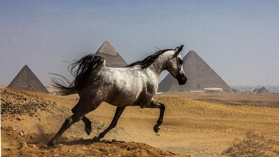 Running near oldest pyramid