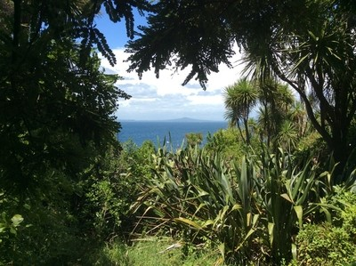 Aucklands Mountain in the distance