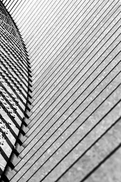 Follow the lines