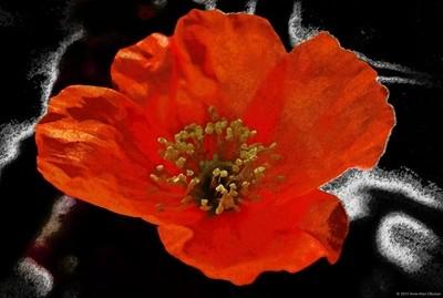 Flaming orange