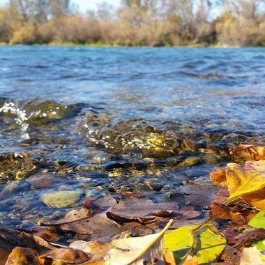 Sacramento River California in the fall