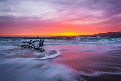 A nice warm sunset burn observed at Baker beach in san fran. I like how the form & position of the driftwood create intetesting wave patterns.