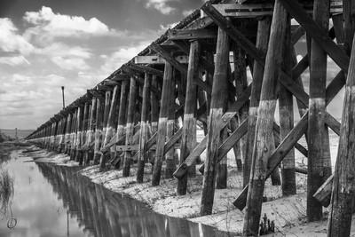 Trestle in Black & White