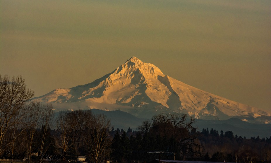 Mount Hood overlooks the Colombia Gorge in Oregon the low sun makes the snow covered peak glow to...