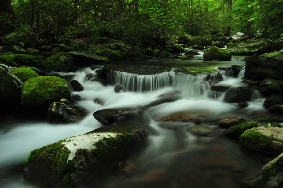 Porter's Creek in the Greenbrier section of Great Smoky Mountains National Park is one o...