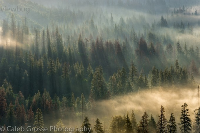 Dreams in Yosemite by calebgrosse - Earth Day 2017 Photo Contest