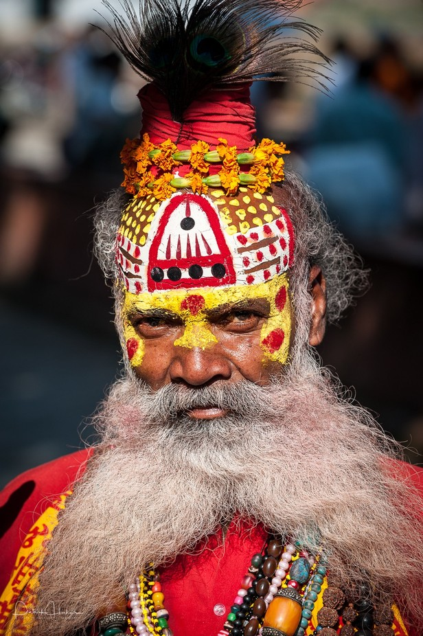 Portrait of a Sadhu by Patosan - Cultures of the World Photo Contest