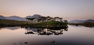 Irish reflections