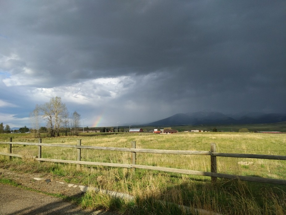 I just had to pull over and get this rainbow. The birds singing added just the right background f...