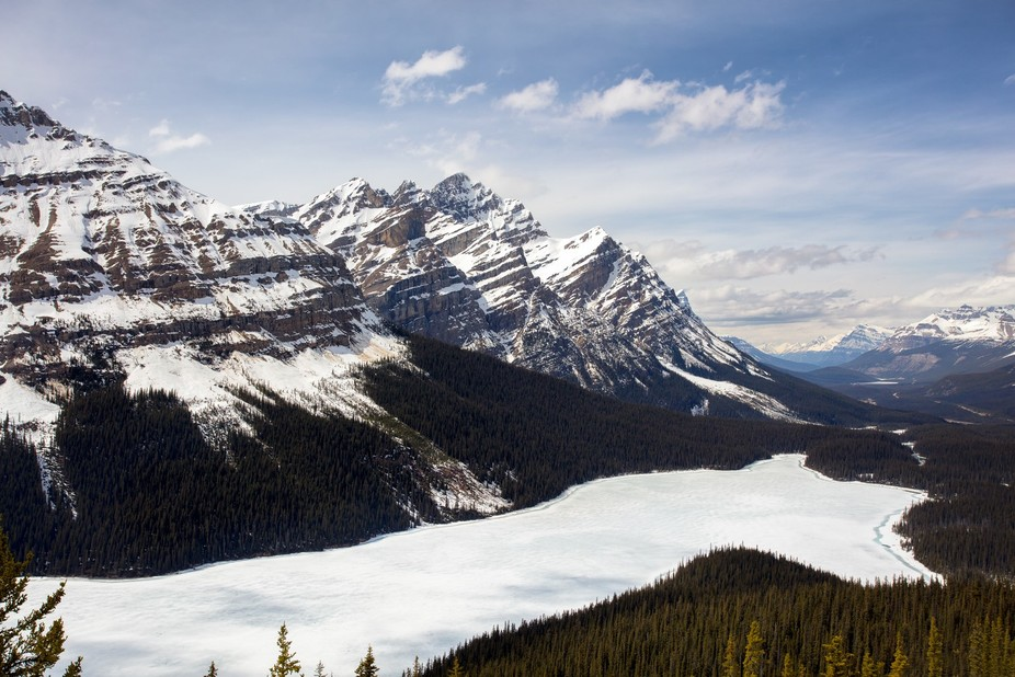 A frozen Peyto Lake in Canada's Banff National Park.