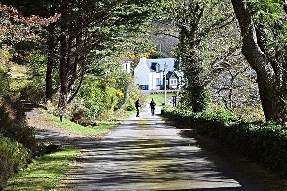 Lochalsh forrest houses