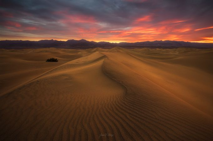 I Dream of Dunes by jasonchong - Earth Day 2017 Photo Contest