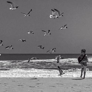 Boy chased by gulls